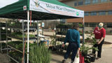 Outdoor farmers' markets' return signals arrival of spring