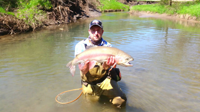 Angler catches massive trout, doesn't count for state record