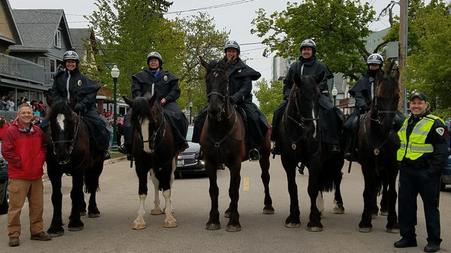 Madison police welcome 6th horse to mounted patrol unit