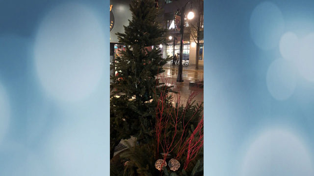 Police: Grinches steal Christmas tree installed near State Street