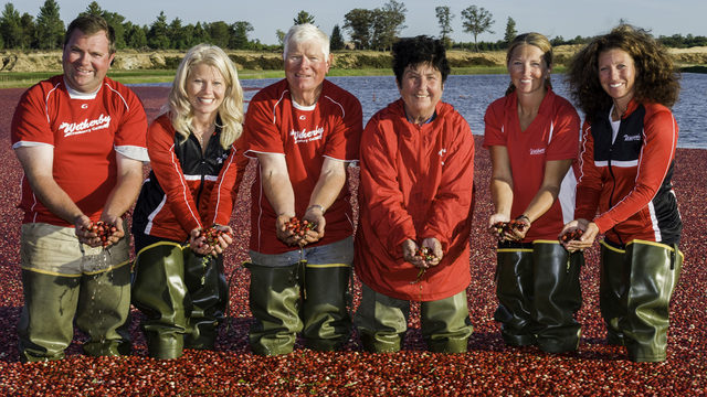 Beyond the bog: A look at cranberry production in Wisconsin