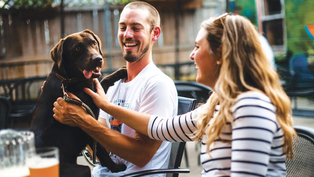 37 dog-friendly restaurants, bars and patios to visit this summer