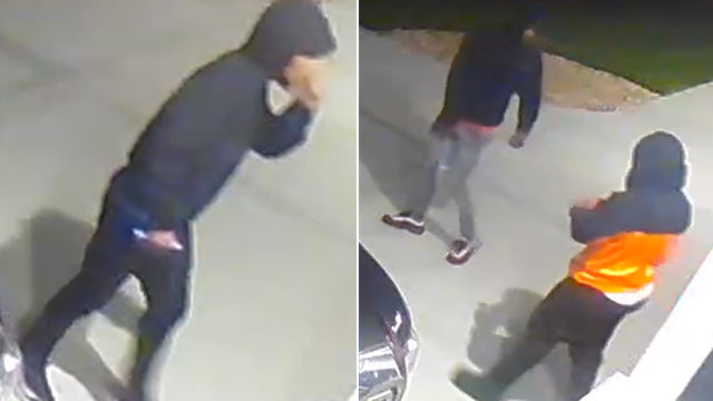 Dane County Sheriff's Office looking for people involved in Town of Windsor burglary