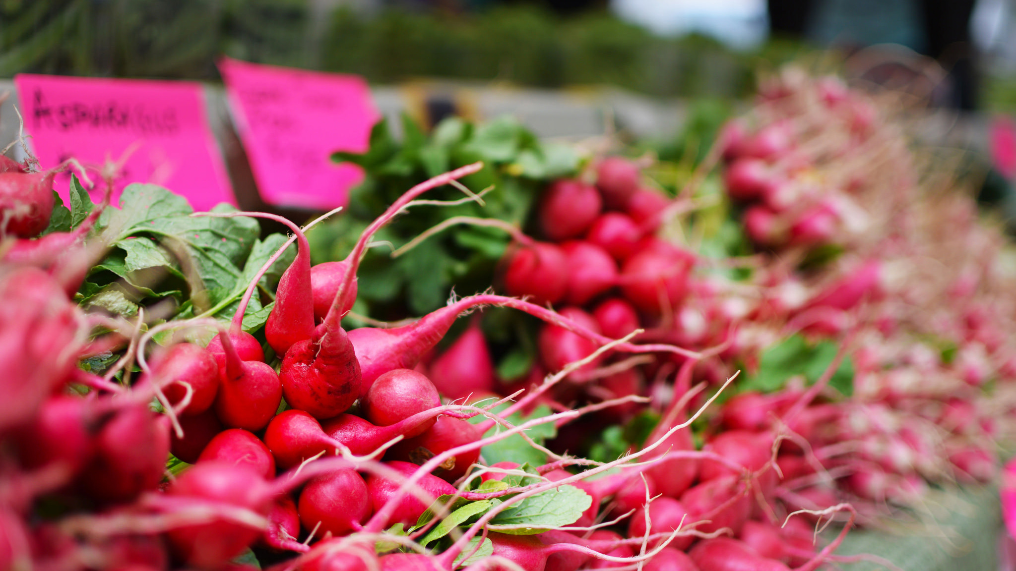 Radishes Piled High On A Farmer's Table At The Dcfm