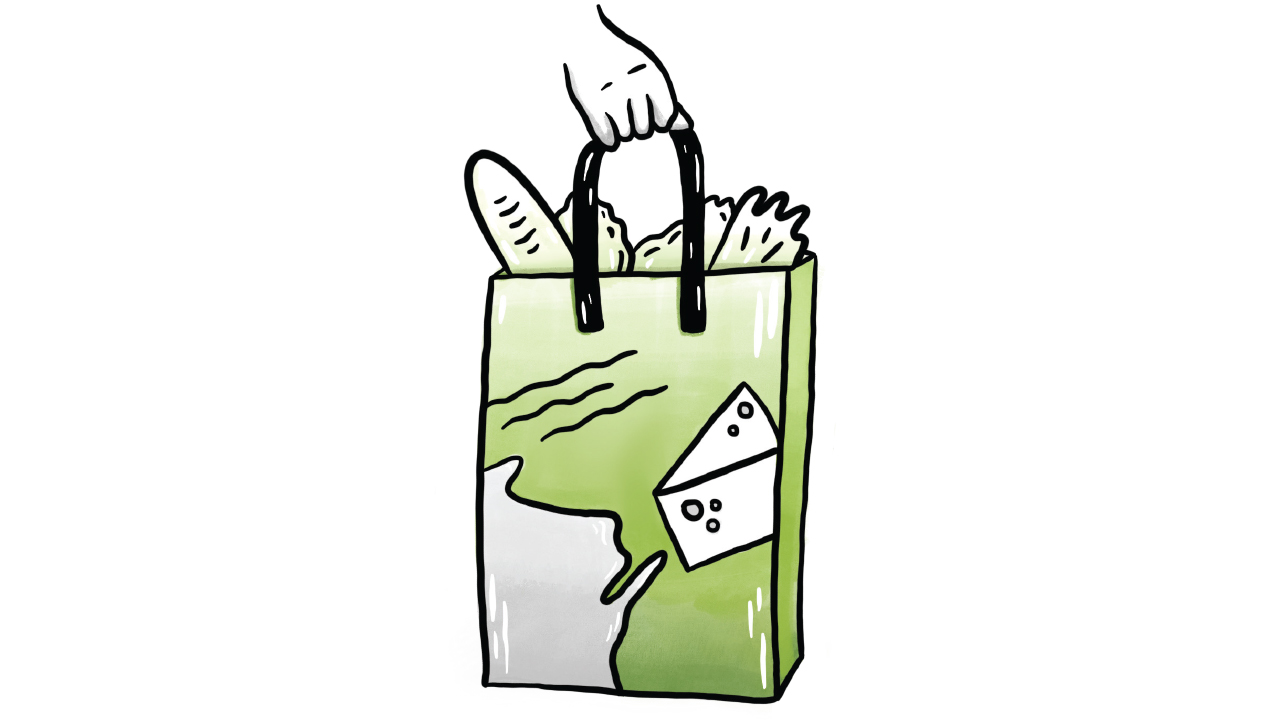grocery bag filled with items