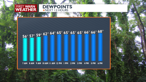 Next 12 Hours Dewpoint