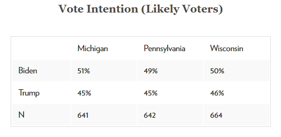 Vote Intention (likely Voters)