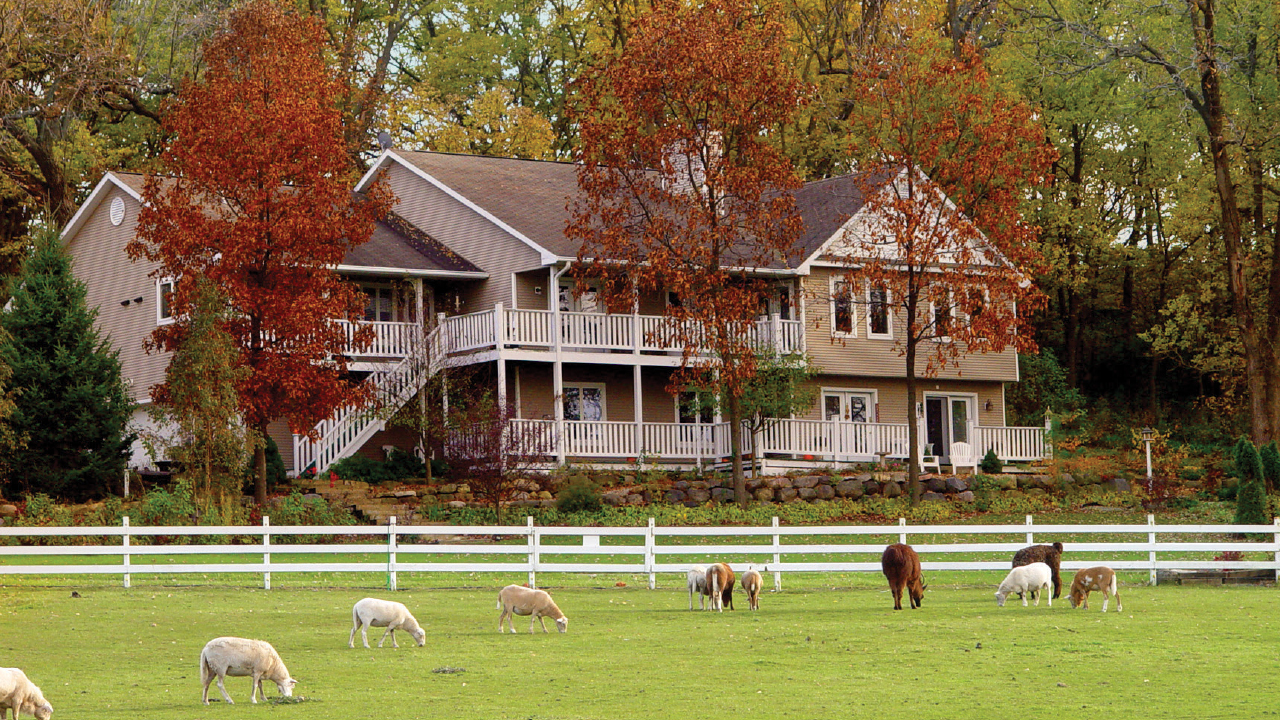 exterior of Speckled Inn with sheep in the pasture
