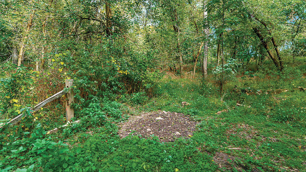 Filled grave at Nature Path