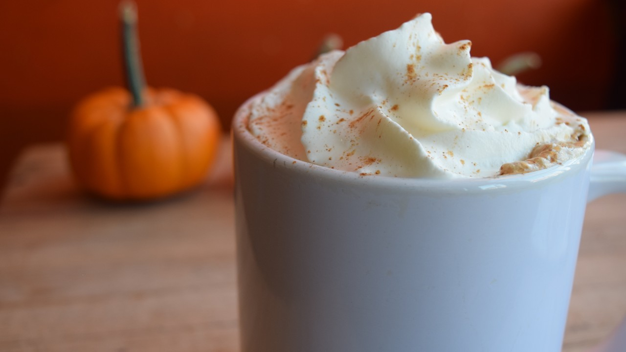 The Mayan Spiced Mocha, topped with whipped cream, is served in a mug at Indie Coffee in front of a pumpkin in honor of the arrival of fall.